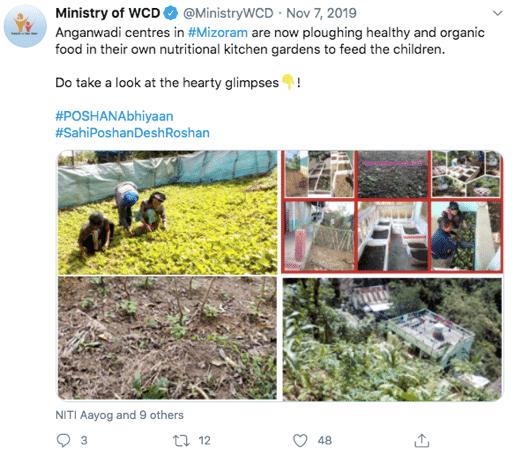mizoram organic food