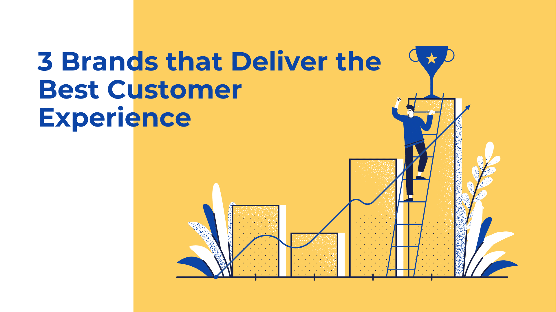 3 Brands that Deliver the Best Customer Experience